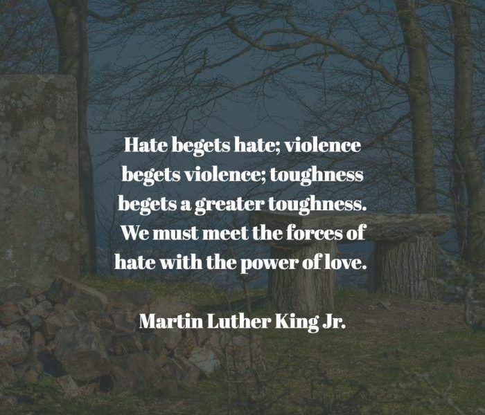 15 Inspiring And Thought Provoking Quotes From Martin Luther King Jr The Funny Beaver Thought Provoking Quotes Martin Luther King Jr Inspirational Quotes Motivation