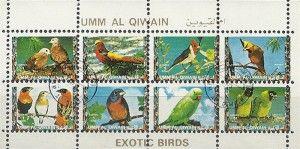 Exotische Vogels / Exotic Birds - Umm Al Qiwain - 1972.  Op voorraad - € 0,50
