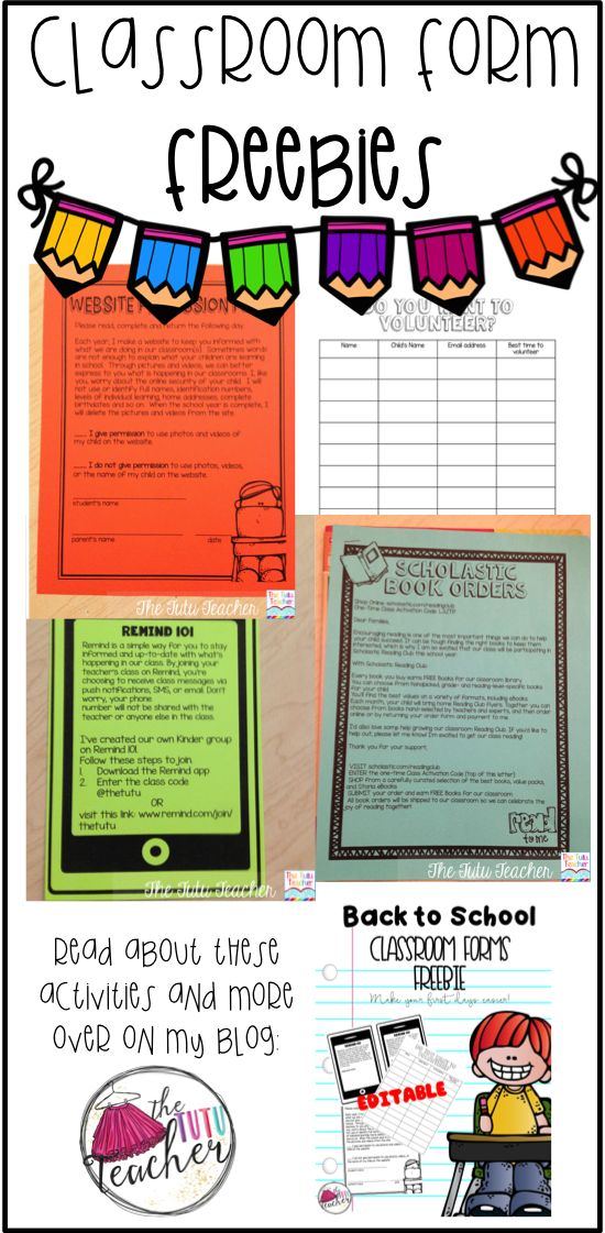 Are you on the lookout for FREE classroom forms to help make this the best back to school season yet? Then you're in luck! Everything you want is right here! Click through to grab your freebie. It includes a schedule, Remind 101 form, Scholastic book orde