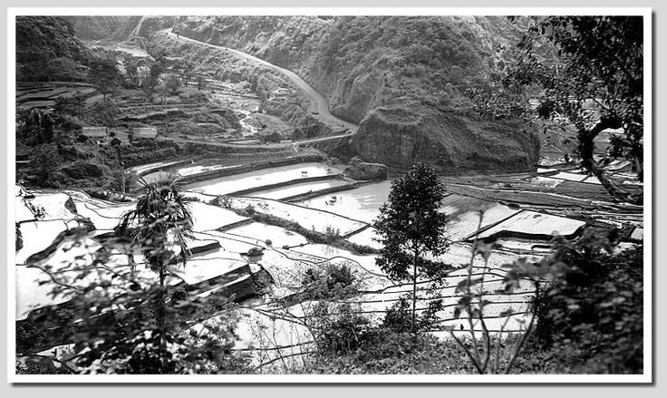 Balinese scenery between Klungkung and Karangasem, 1930s, photographer unknown.