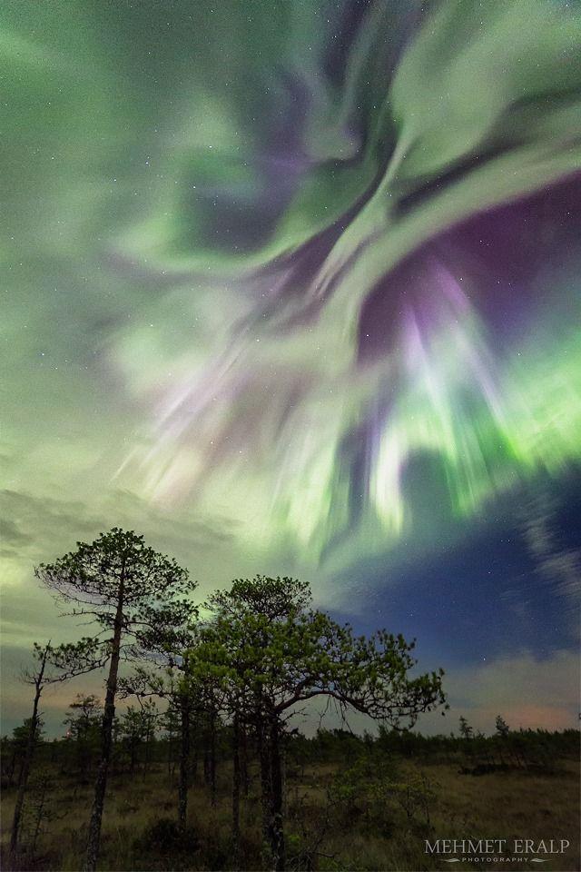 Dance of the Aurora  October 2015 Kirveslampi - Leivonmäki National Park