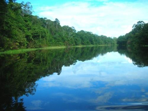 El Amazonas Colombia