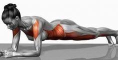 Na verdade este é um dos exercícios mais eficazes para fortalecer a parte central do corpo. É um dos treinos mais poderosos para definir os músculos das nádegas, braços e pernas. Ele derrete depósitos de gordura e fortalece os músculos internos e externos das costas e do abdómen.
