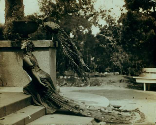 1915 - Ruth St. Denis, co-founder of the famous Denishawn School of Dancing, in Peacock Costume, in the school's garden in Los Angeles.