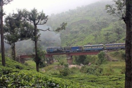 Day 8 Ooty  Ooty's scenic beauty and relaxed atmosphere make it an ideal place to stay another day. Today you will have another chance to play at the beautiful Ooty #Golf Course. Non-golfers may experience one of the region's best attractions – the Ooty toy train, or Nilgiris Mountain Railway.