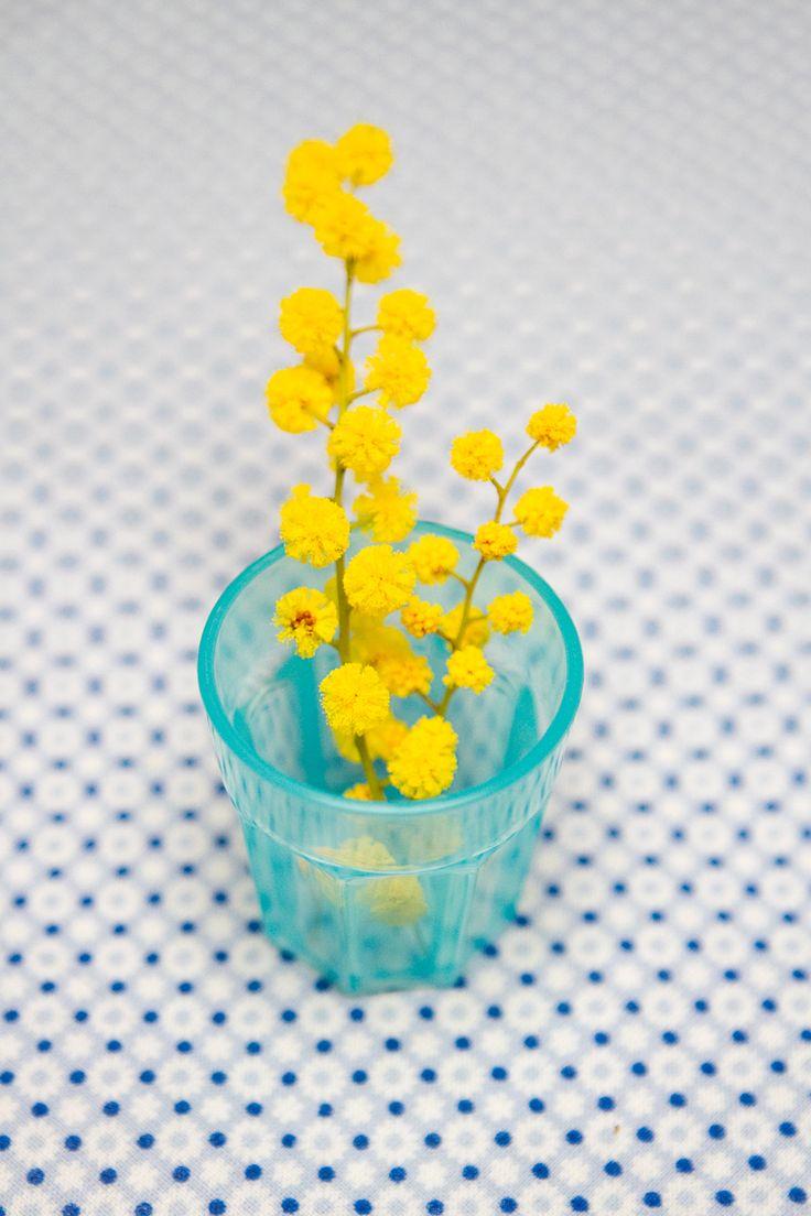 L'odeur du mimosa m'ennivre de bonheur car elle arrive souvent avec les beaux jours quand l'air est doux et la lumiere merveilleuse..