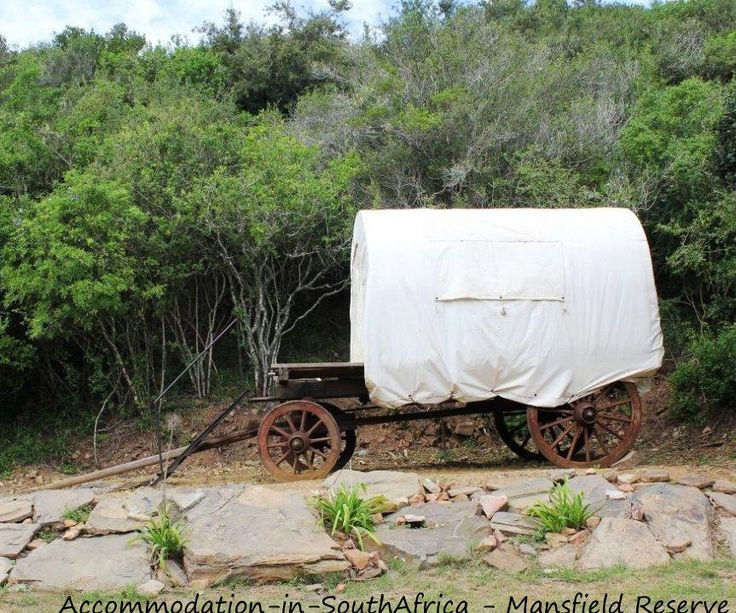 Accommodation at Mansfield Reserve.Reserve accommodation Port Alfred.