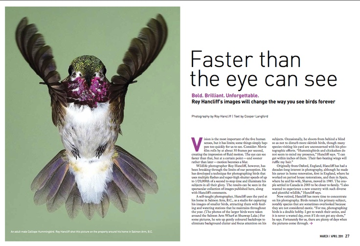 """Honourable Mention in Creative #Photography. """"Faster Than The Eye Can See"""" by Roy Hancliffe and Steven Balaban published in #Canadian Wildlife, 2011."""