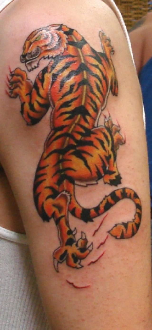 80 crazy and amazing tattoo designs for men and women desiznworld - Animal Tattoos Pictures Of Animals In Tattoo Form