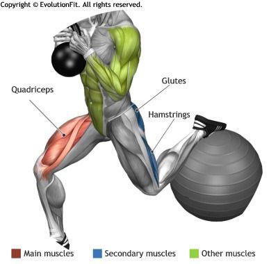 quadriceps  globet bulgarian kettlebell split squat on
