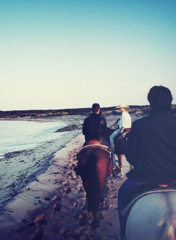 horse back riding montauk beach. People really do ride horses on the beach, quite often in Suffolk Co. L.I.
