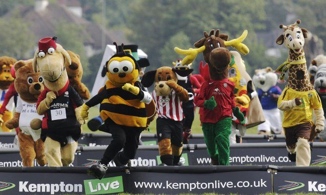 Mascots representing a variety of sports club and associations participate in the Mascot Grand National 2012 for Have a Heart Charity at Kempton Park race course in Sunbury on Thames, southern England May 7, 2012