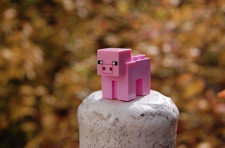Minecraft ya pasó los 100 millones de copias vendidas y este año ya está vendiendo 53 mil copias por día