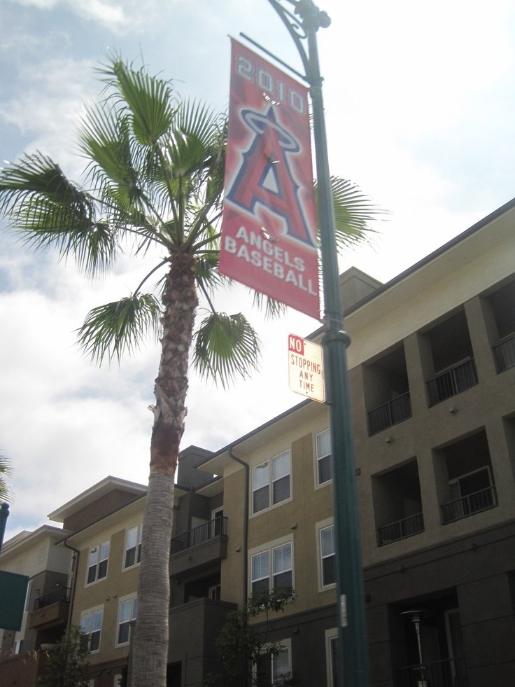 120 Best Images About Anaheim On Pinterest Restaurant Italian Restaurants And Catholic Churches