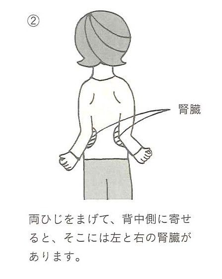 腎臓の調子を整えるエクササイズ