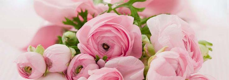 giv et gavekort i form af smukke roser til mors dag | shopsites.dk