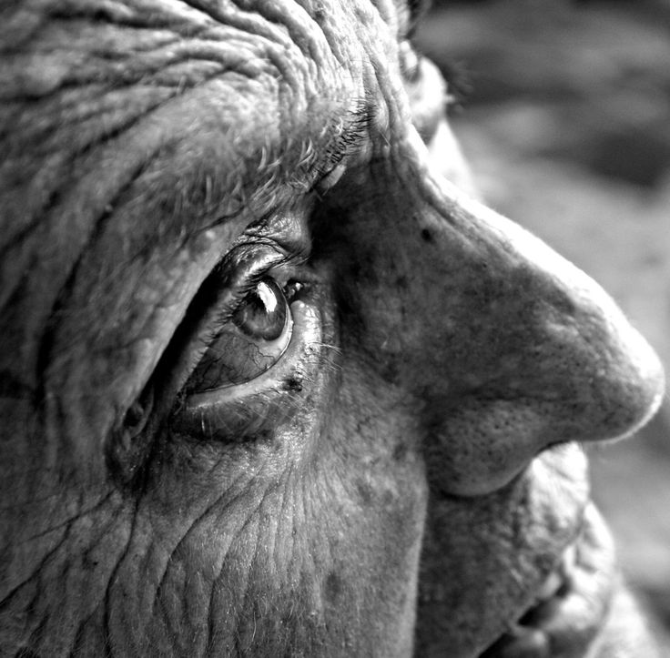 A Wrinkle in Time. Beauty is in the eye of the beholder. (Photo and caption by Nikki Krecicki) 2010 National Geographic Photography Contest