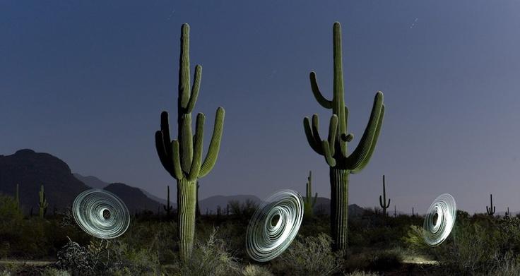 American #desert #landscape photograph by lightmark.