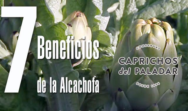 http://caprichosdelpaladar.es/7-beneficios-de-la-alcachofa-para-salud/   7 BENEFICIOS DE LA ALCACHOFA PARA SALUD