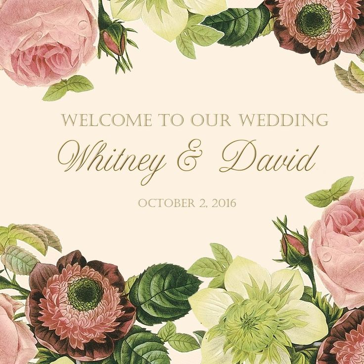 (sku115) Wedding Welcome Bag labels- blush vintage roses on ivory for wedding favors, hotel guests hospitality gift bags or box, goody bags