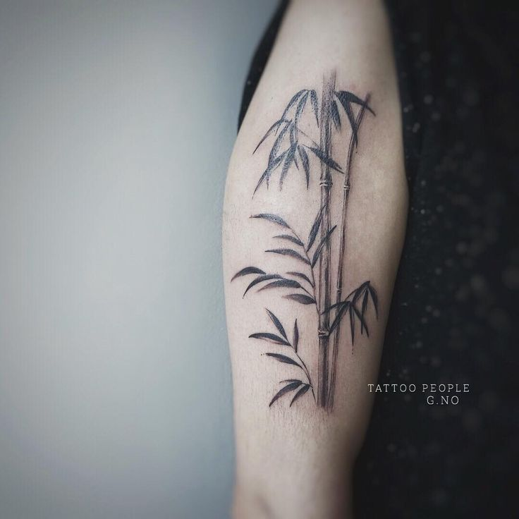 bamboo tattoo by @gnotattoo • 157 likes