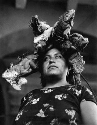 Graciela Iturbide: Iguanas, Share, Graciela Iturbid, Gracielaiturbid, Of The, Lady, Senora De, Our Lady