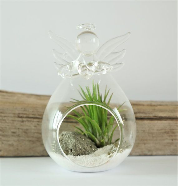 Glass angel terrarium kit with air plant  DIY by AlvinaDecco
