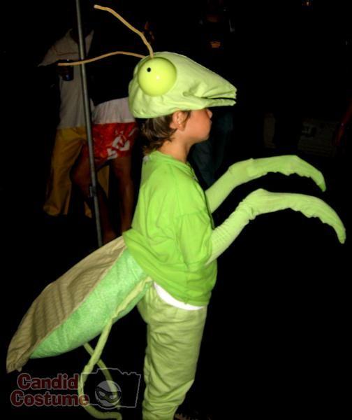 praying mantis costume to make   Praying Mantis Costume submitted by: jacy cabaniss, October 26 2007