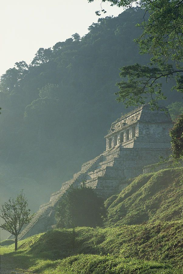 Misty view of the Temple of Inscriptions - Yucatan, Mexico