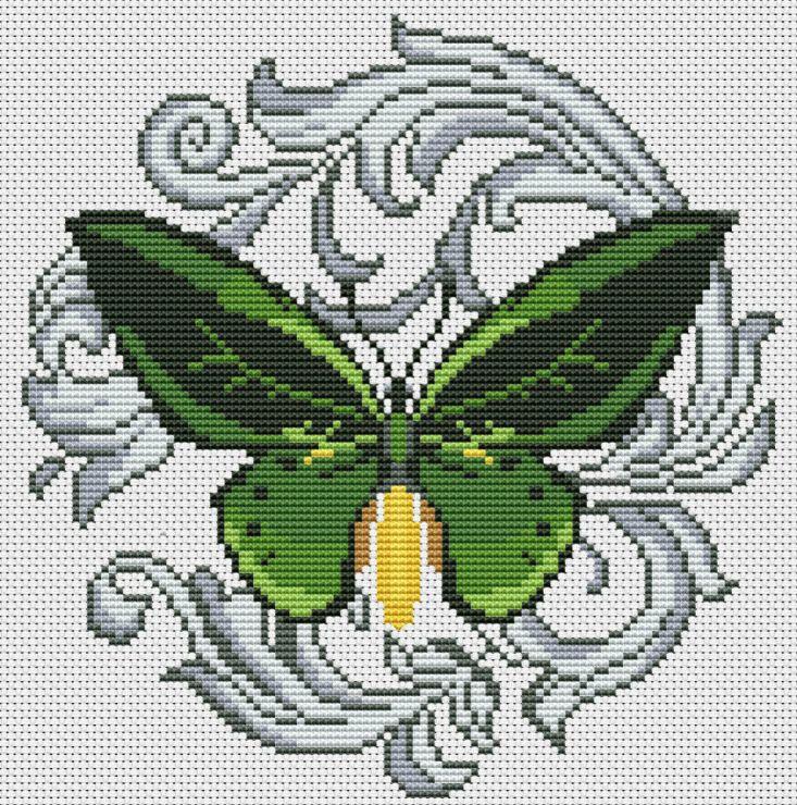 Gallery.ru / Green Birdwing - Бабочки - Norsvet
