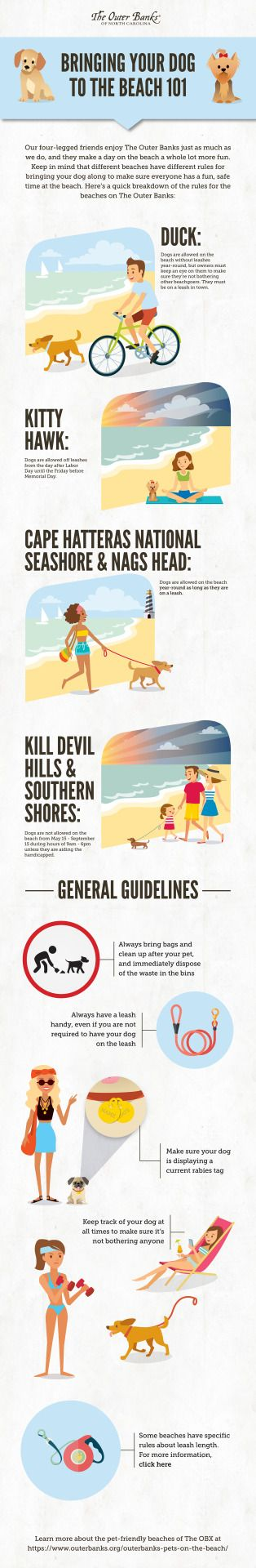 Bringing Your Dog To The Beaches On The Outer Banks 101