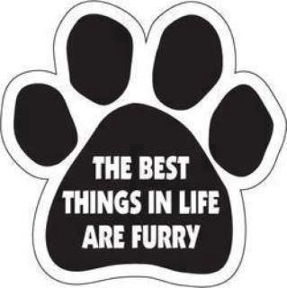 The best things in life are furry -amen
