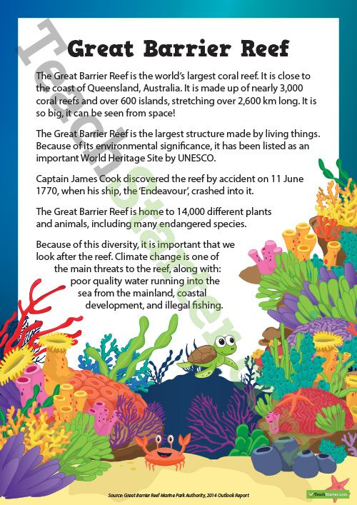 Teaching Resource: A comprehension activity about The Great Barrier Reef.