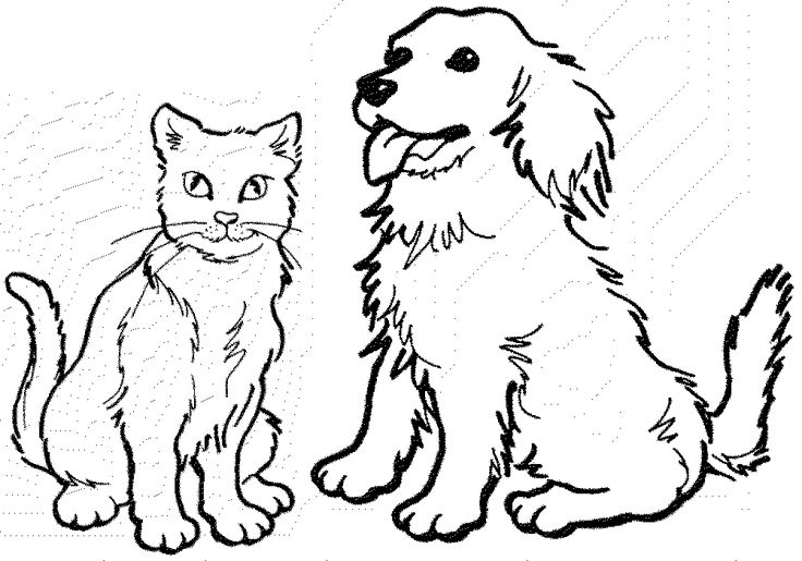 17 Best images about Cat Templates to Zentangle on ...