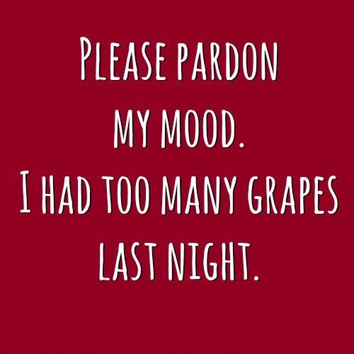 Please pardon my mood. I had too many grapes last night.