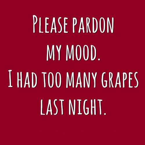 Please pardon my mood. I had too many grapes last night.