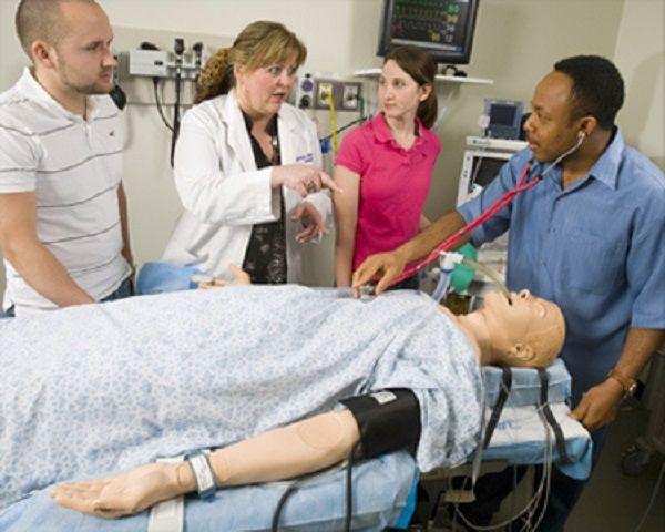 best 25+ nurse anesthetist ideas on pinterest | school nurse jobs, Human Body