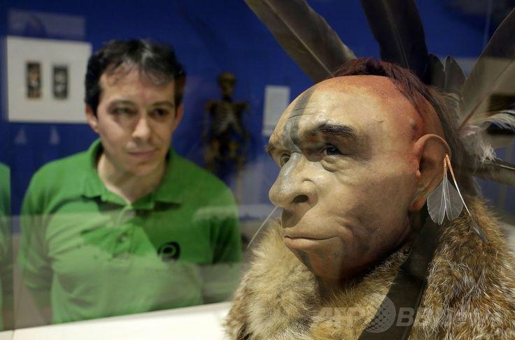 スペイン・ブルゴス(Burgos)の人類進化博物館(Museum of Human Evolution、MEH)で展示されているネアンデルタール人の復元模型(2014年6月10日撮影)。(c)AFP/CESAR MANSO ▼11Jun2014AFP|ネアンデルタール人の「科学的な」復元模型、スペインで展示 http://www.afpbb.com/articles/-/3017379 #Neanderthal #Homo_neanderthalensis #Homme_de_Neandertal #Neandertaler #Physical_model