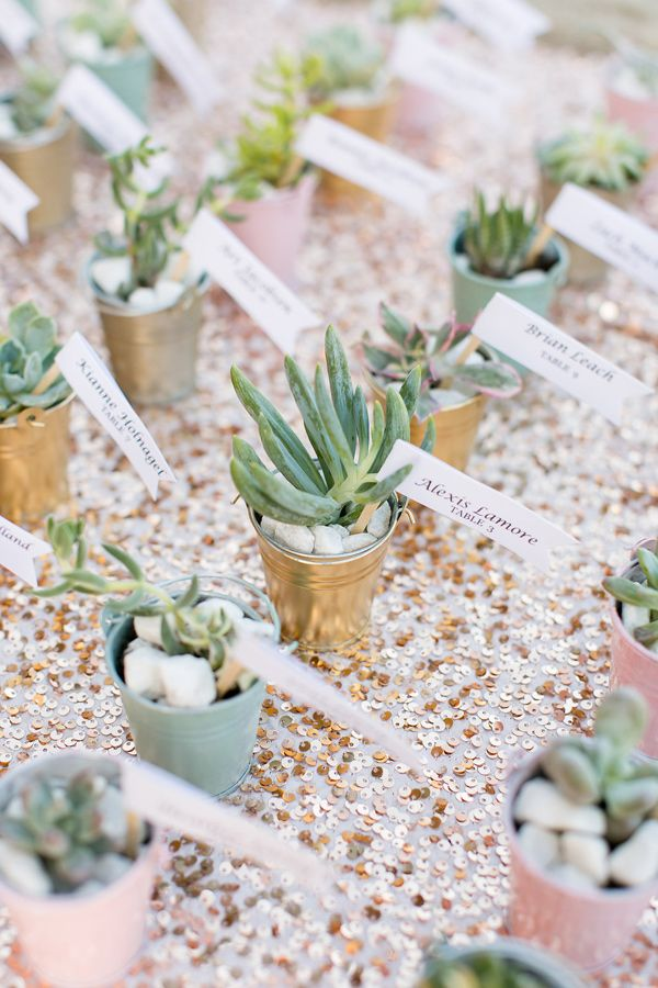 succulents seating chart - photo by Anna Marks Photography