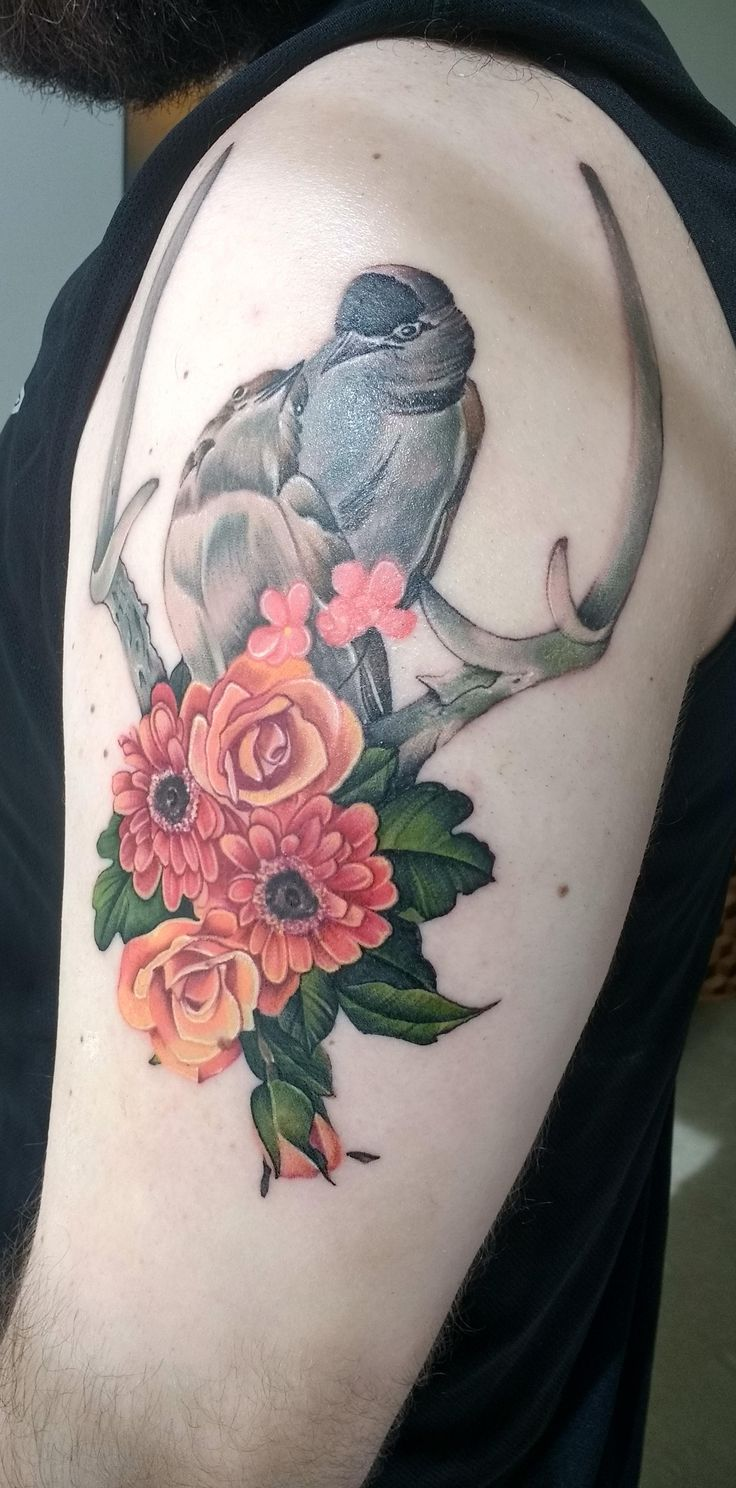 Birds, antlers, and flowers tattoo from Dia Moeller at Boston Tattoo Company, Boston, MA, USA