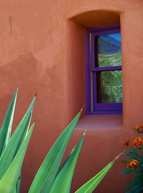 A Window In Time South of the Barrio, downtown Tucson Arizona