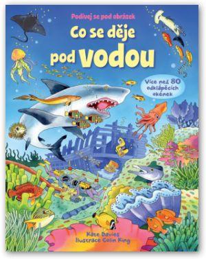 encyklopedie s okýnky,pro děti,odklápěcí okénka, ryby, potápění,šnorchlování, pod hladinou moře, moře, zvířata, rostliny. Zajímavé informace.. kniha