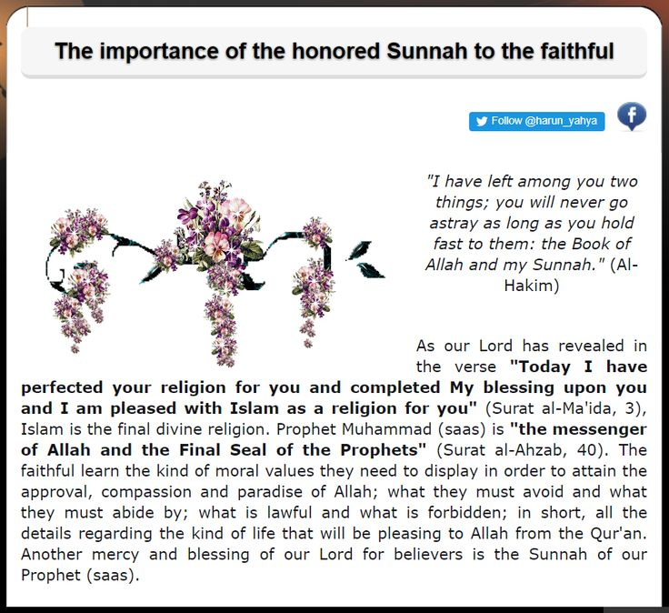 The importance of the honored Sunnah to the faithful