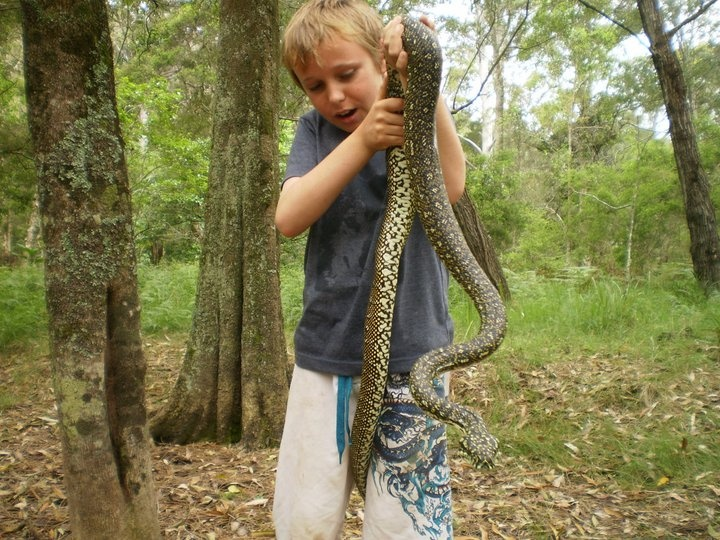 yes really, let your kids play with snakes