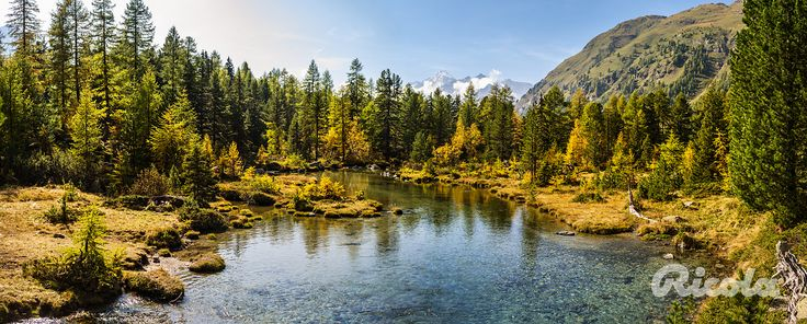 #Switzerland #Lake #Alps #Ricola
