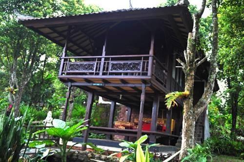 La chambre de l'hôtel à Munduk