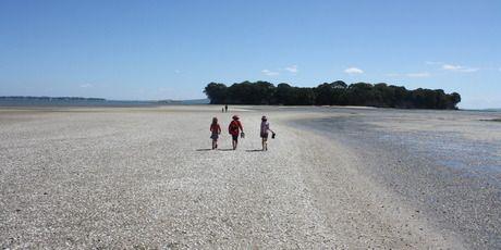 A sandbar provides access to a former pa site off Beachlands.