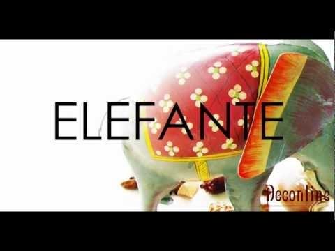 Elefante indio, #decoracion #etnico pintado a mano