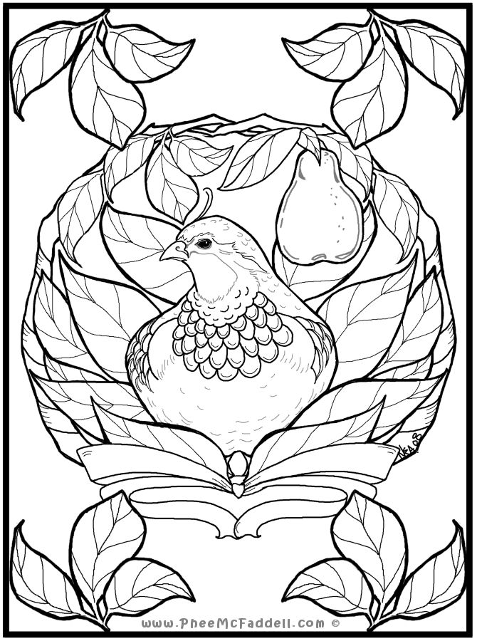 140 best images about Coloring Pages for Adults  Teens on