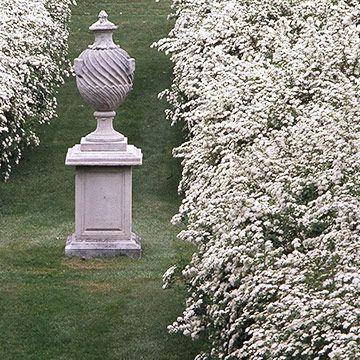 273 best images about white gardens on pinterest gardens. Black Bedroom Furniture Sets. Home Design Ideas